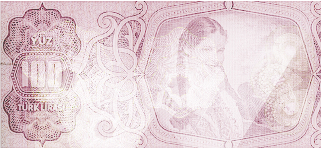 Banknote Reproduction